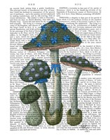 Psychedelic Mushrooms 1 Fine Art Print