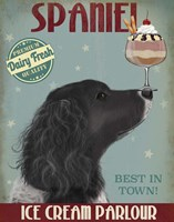 Springer Spaniel, Black, Bebe,Ice Cream Fine Art Print