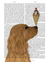 Cocker Spaniel, Golden, Ice Cream Fine Art Print