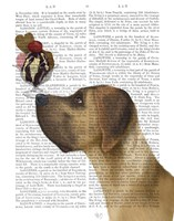 Great Dane, Tan, Ice Cream Fine Art Print