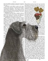 Schnauzer, Grey, Ice Cream Fine Art Print