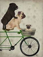 Pugs on Bicycle Fine Art Print