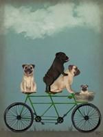 Pug Tandem Fine Art Print