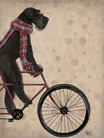 Schnauzer on Bicycle, Black Fine Art Print