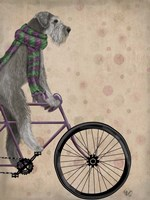 Schnauzer on Bicycle, Grey Fine Art Print
