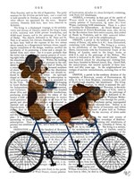 Basset Hound Tandem Fine Art Print