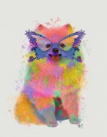 Rainbow Splash Pomeranian Fine Art Print