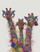 Rainbow Splash Giraffe Trio Fine Art Print