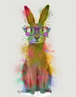 Rainbow Splash Rabbit 1 Fine Art Print