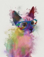 Rainbow Splash Cat 2 Fine Art Print