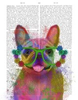 Rainbow Splash French Bulldog, Portrait Fine Art Print