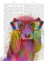 Rainbow Splash Cocker Spaniel, Portrait Fine Art Print