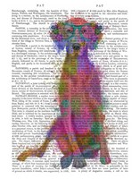 Rainbow Splash Weimaraner, Full Fine Art Print