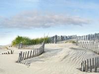 Beachscape III Framed Print