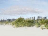 Beachscape IV Fine Art Print