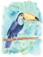 Sweet Tropical Bird I Framed Print