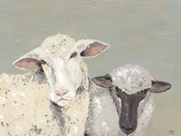 Sweet Lambs I Fine Art Print