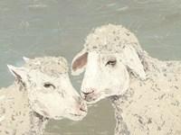 Sweet Lambs II Fine Art Print