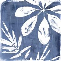 Tropical Indigo Impressions II Fine Art Print