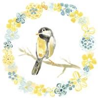 Solo Songbird II Framed Print