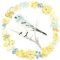 Solo Songbird III Framed Print