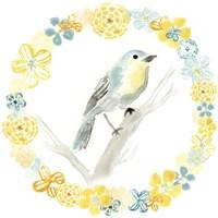 Solo Songbird IV Framed Print