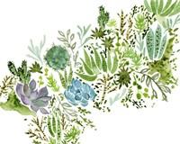 Succulent Field I Fine Art Print