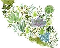 Succulent Field II Fine Art Print