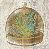 Glass Garden I Framed Print