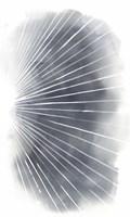 Rays II Framed Print