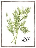 Watercolor Herbs III Framed Print