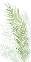 Faint Palms I Fine Art Print