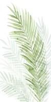 Faint Palms I Framed Print