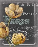 Chalkboard Paris II Fine Art Print