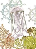 Undersea Creatures III Fine Art Print