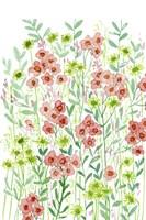 Wall Flowers I Framed Print