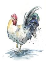 Rooster Splash I Framed Print