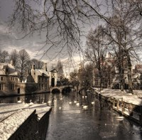 Bruges In Christmas Dress Fine Art Print