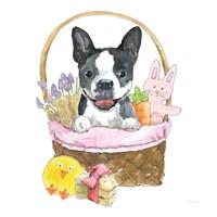Easter Pups VII Framed Print