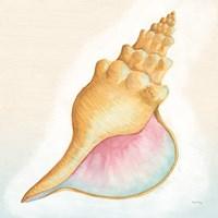 Boardwalk Conch Fine Art Print