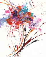 Floral Explosion I on White Fine Art Print