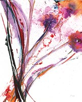 Floral Explosion III on White Fine Art Print