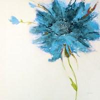 Turquoise Daisy on White Framed Print