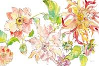 Dahlia Delight of the Day I Fine Art Print