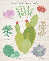 Succulent and Cacti Chart III on Wood Fine Art Print