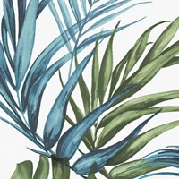 Palm Leaves II Fine Art Print