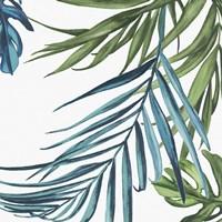 Palm Leaves III Fine Art Print