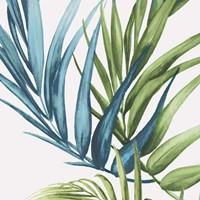 Palm Leaves IV Framed Print