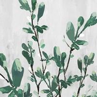 The Branch I Fine Art Print