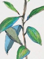 Greener Fine Art Print